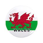 Welsh Flag (labeled) 3.5
