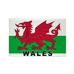 Welsh Flag (labeled) Rectangle Magnet