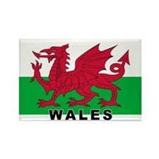Welsh Flag (labeled) Rectangle Magnet
