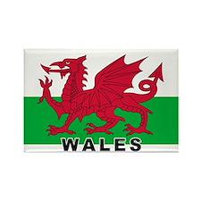 Welsh Flag (labeled) Rectangle Magnet (10 pack)