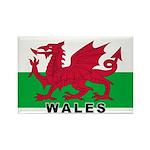 Welsh Flag (labeled) Rectangle Magnet (100 pack)