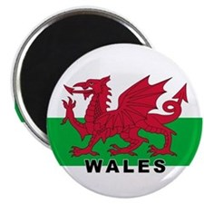 Welsh Flag (labeled) Magnet