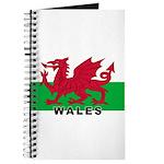 Welsh Flag (labeled) Journal
