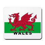 Welsh Flag (labeled) Mousepad