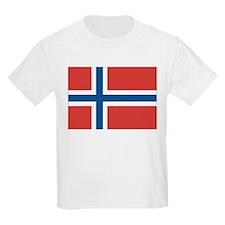 Norway/Norwegian Flag T-Shirt