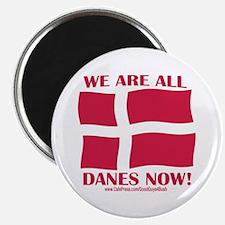 Support Denmark Free Speech Magnet