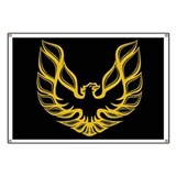 Firebird trans am Banners