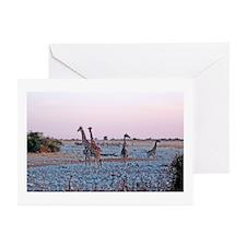 Giraffes Sunset Greeting Cards (Pk of 20)