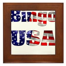 Bingo USA Framed Tile