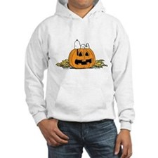 Pumpkin Patch Lounger Jumper Hoody
