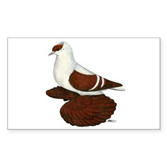 Red Fullhead Swallow Pigeon Decal