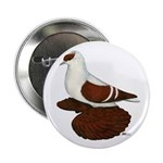 """Red Fullhead Swallow Pigeon 2.25"""" Button (10"""