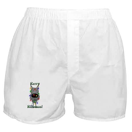Great Dane Christmas Lights Boxer Shorts