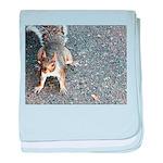 Squirrel Infant Blanket