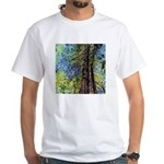 TOWERING REDWOODS White T-Shirt