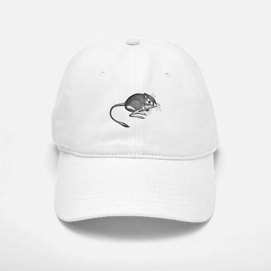 Kangaroo Rat Baseball Baseball Cap