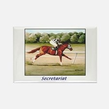 Secretariat Rectangle Magnet