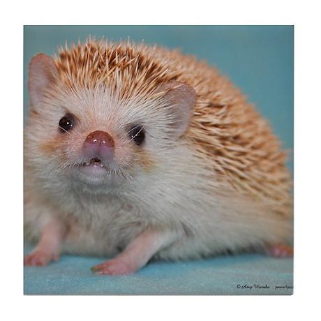 Romeo the Hedgehog Tile Coaster