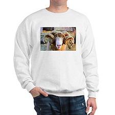 Kaleidescope Ram Sweatshirt