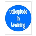 VolleyDude/Chick in Training Small Poster
