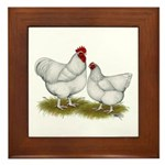 Orpington White Chickens Framed Tile