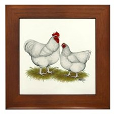 Orpington White Chickens Framed Tile