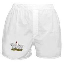 Orpington White Chickens Boxer Shorts