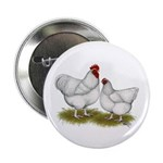 """Orpington White Chickens 2.25"""" Button (10 pac"""