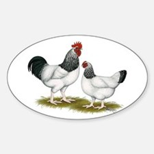 Sussex Light Chickens Decal