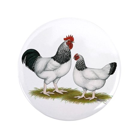 "Sussex Light Chickens 3.5"" Button"
