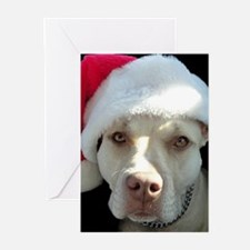 Merry Pitmas! Greeting Cards (Pk of 20)