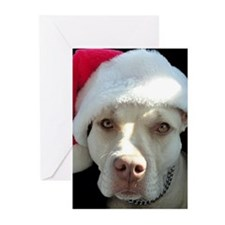 Merry Pitmas! Greeting Cards (Pk of 10)