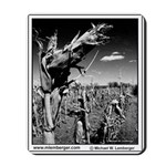 Farm Field - Dry Corn -Mousepad