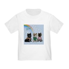 Rainy Day Cairn Terrier T