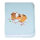 Guinea pigs Blanket