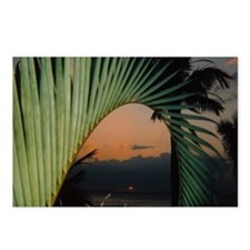 Terminal Sunset Postcards (Package of 8)