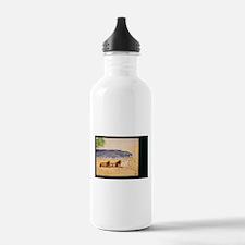 Cute Barbaro horse Water Bottle