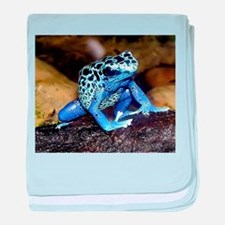 Rainforest Frog Infant Blanket