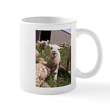 Baby Lamb Mug