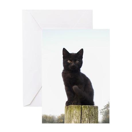 Black Kitty Greeting Card