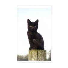 Black Kitty Rectangle Decal