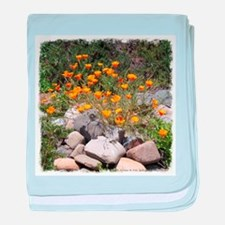 California Poppies Infant Blanket
