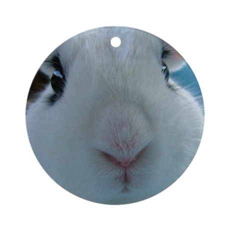 "Dwarf Bunny ""up close"" ornament (Round)"
