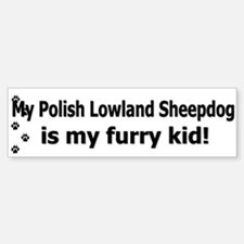Polish Lowland Sheepdog Furry Kid Bumper Bumper Bumper Sticker