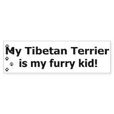 Tibetan Terrier Furry Kid Bumper Bumper Sticker