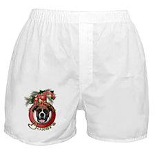 Christmas - Deck the Halls - Boxers Boxer Shorts