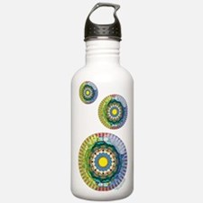 Summer Sunshine Water Bottle