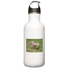 Lamb & Kitty Water Bottle