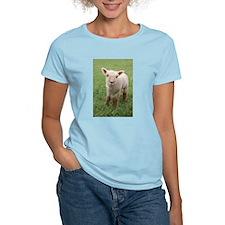 Sweet Lamb T-Shirt