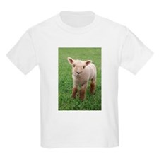 Sweet Lamb T-Shirt